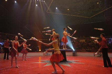 Cirque Vit'anim